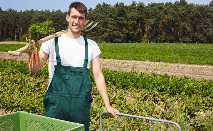 Junger landwirt bei der arbeit  Landwirt - Gehalt und Verdienst