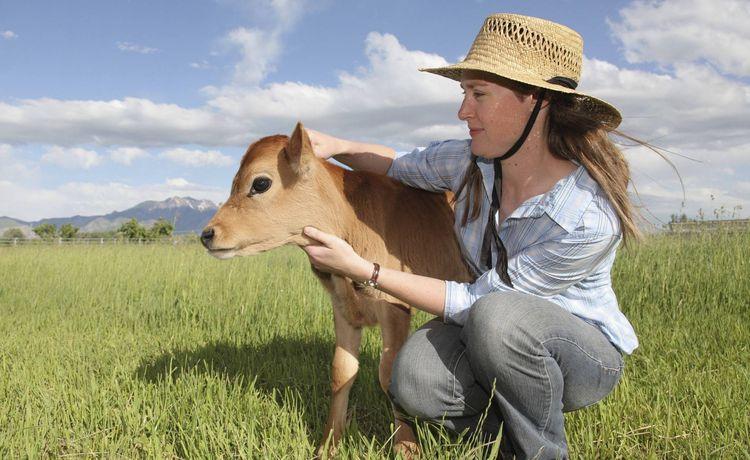 Landwirt - Gehalt und Verdienst   {Junger landwirt bei der arbeit 72}