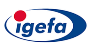 Corporation logo igefalogo