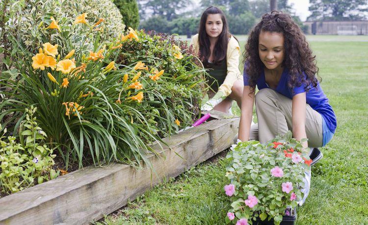 Gehalt Als Gärtner