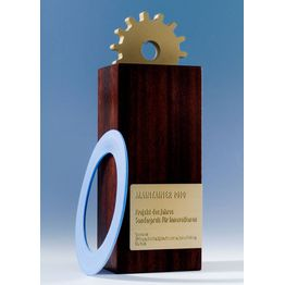 Corporation award maintainer 2010 web